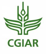 The G-20Y Association discussed its future possible cooperation with CGIAR Consortium